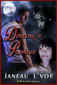 Destiny's Promise, Short Story, 1: The Imminent Future