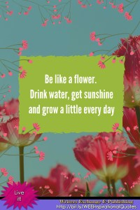 Be like a flower... Inspirational Quote