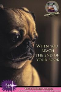 Book Meme: When you reach the end of the book