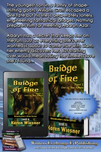 Woodcutter's Grim Series, Book 10, Bridge of Fire, Part 1: Out of the Ashes Blurb Promo Vertical