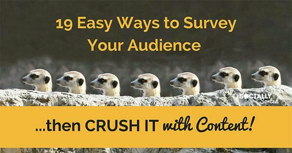 know your audience survey