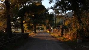 La Bodeguita Writing Retreat Dafni Sunset