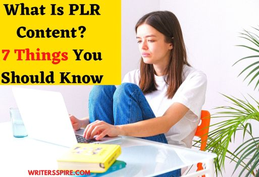 What is PLR Content?