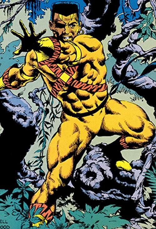 Image result for dc comics bronze tiger