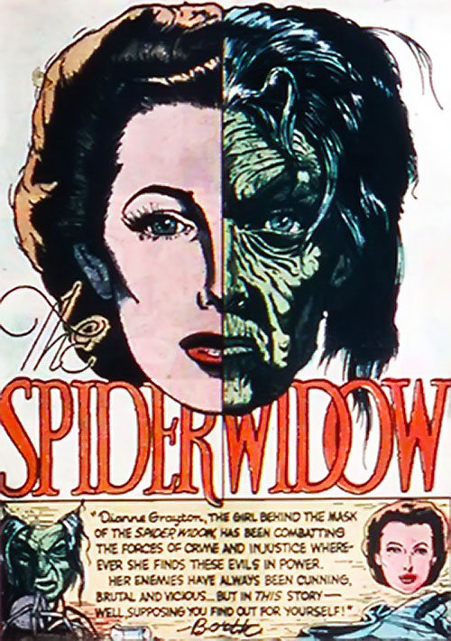 Image result for quality comics spider widow