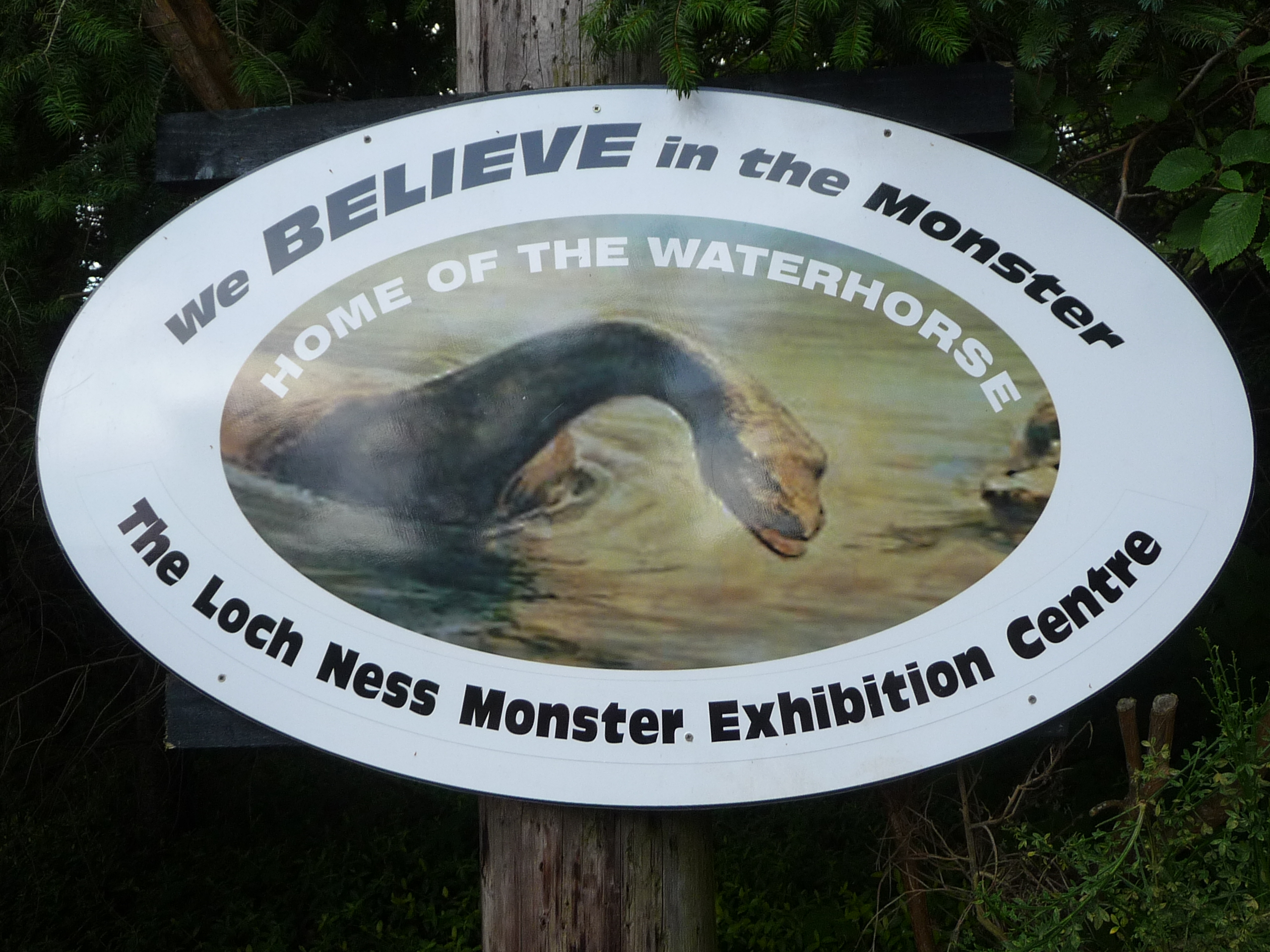 Write If You Think The Loch Ness Monster Is Real Or Not