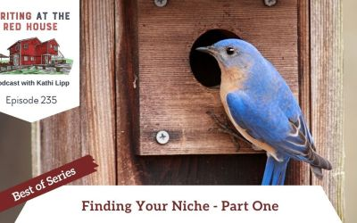 235 Best of Series: Finding Your Niche Part 1