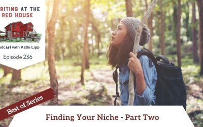 236 Best of Series: Finding Your Niche Part 2