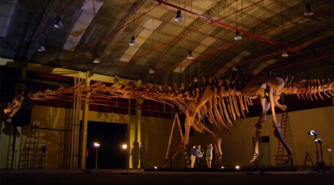 Titanosaurs and wonder