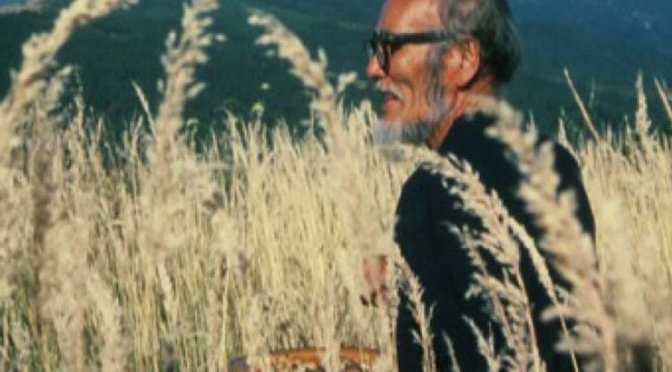 Masanobu Fukuoka: Sowing Seeds in the Desert