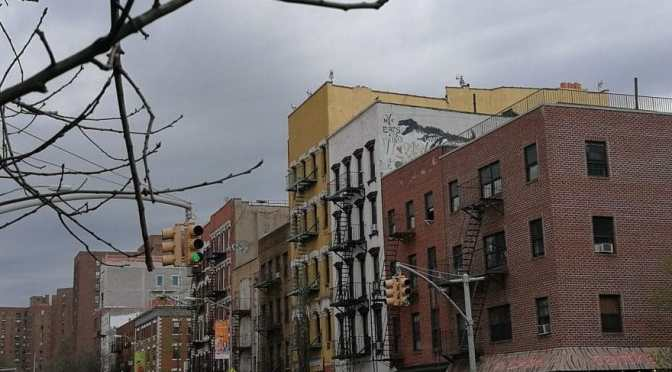 The Museum of Reclaimed Urban Space on the Lower East Side