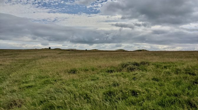 Priddy Nine Barrows and the Priddy Circles
