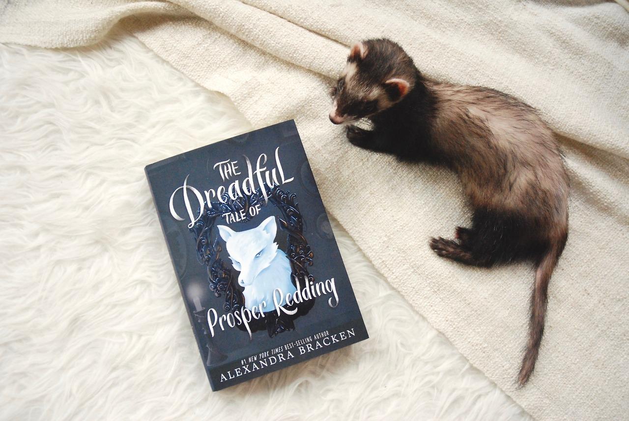 The Dreadful Tale of Prosper Redding от Александра Бракен