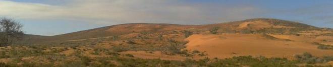 Berber sands of the Pre Sahara