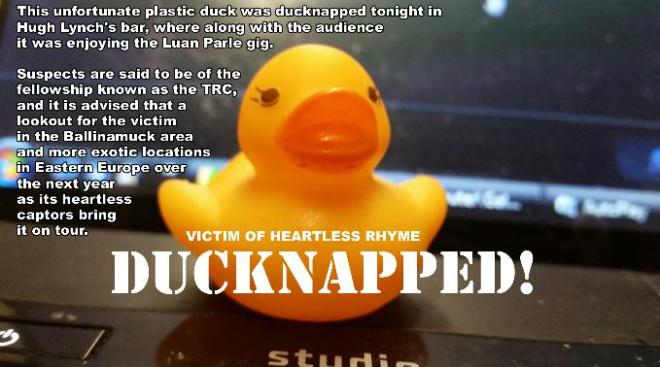 Can you keep an eye out for this innocent duck that was Ducknapped by members of the outfit known as the TRC?