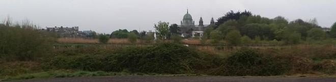 Galway Cathederal seen from across the Corrib River at Terryland Forest