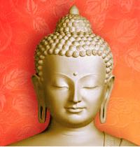 Buddhasugarapple