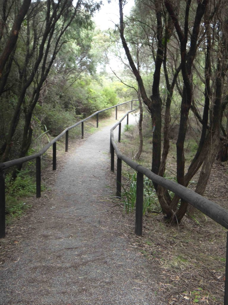 https://www.writteninwaikiki.com/why-im-a-terrible-friend/ walking path trees Western Australia
