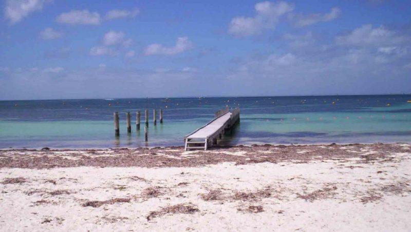 https://www.writteninwaikiki.com/finding-your-happy/ Rottnest Island Western Australia beach