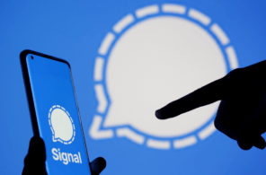 How to set custom chat wallpaper in Signal