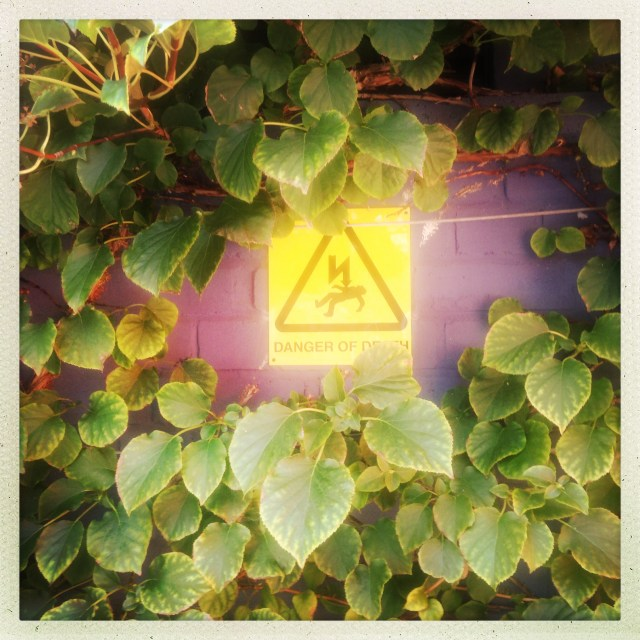 Danger of Death, Hammersmith Hospital