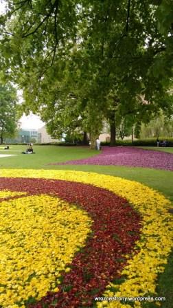 Dywany z tulipanów