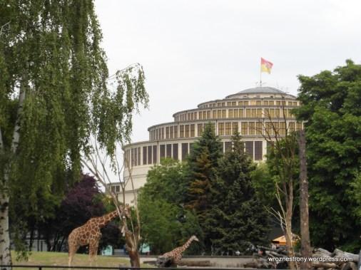 Hala Stulecia i zoo we Wrocławiu