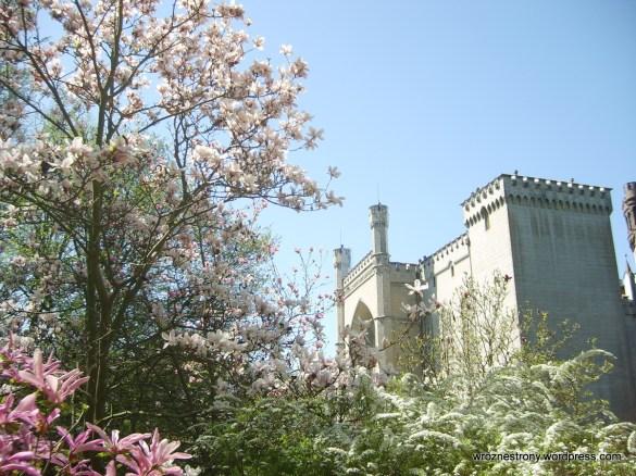 Zamek w Kórniku 05.2012