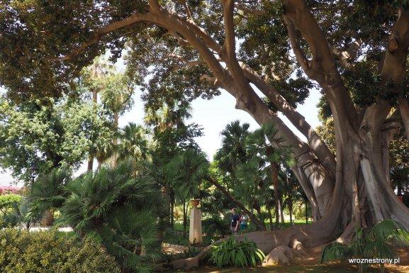 Ogród przy Pałacu Normanów