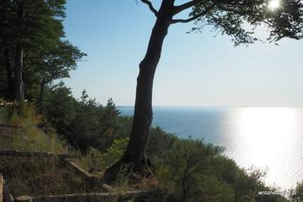 Widok ze wzgórza Gosań na wyspie Wolin