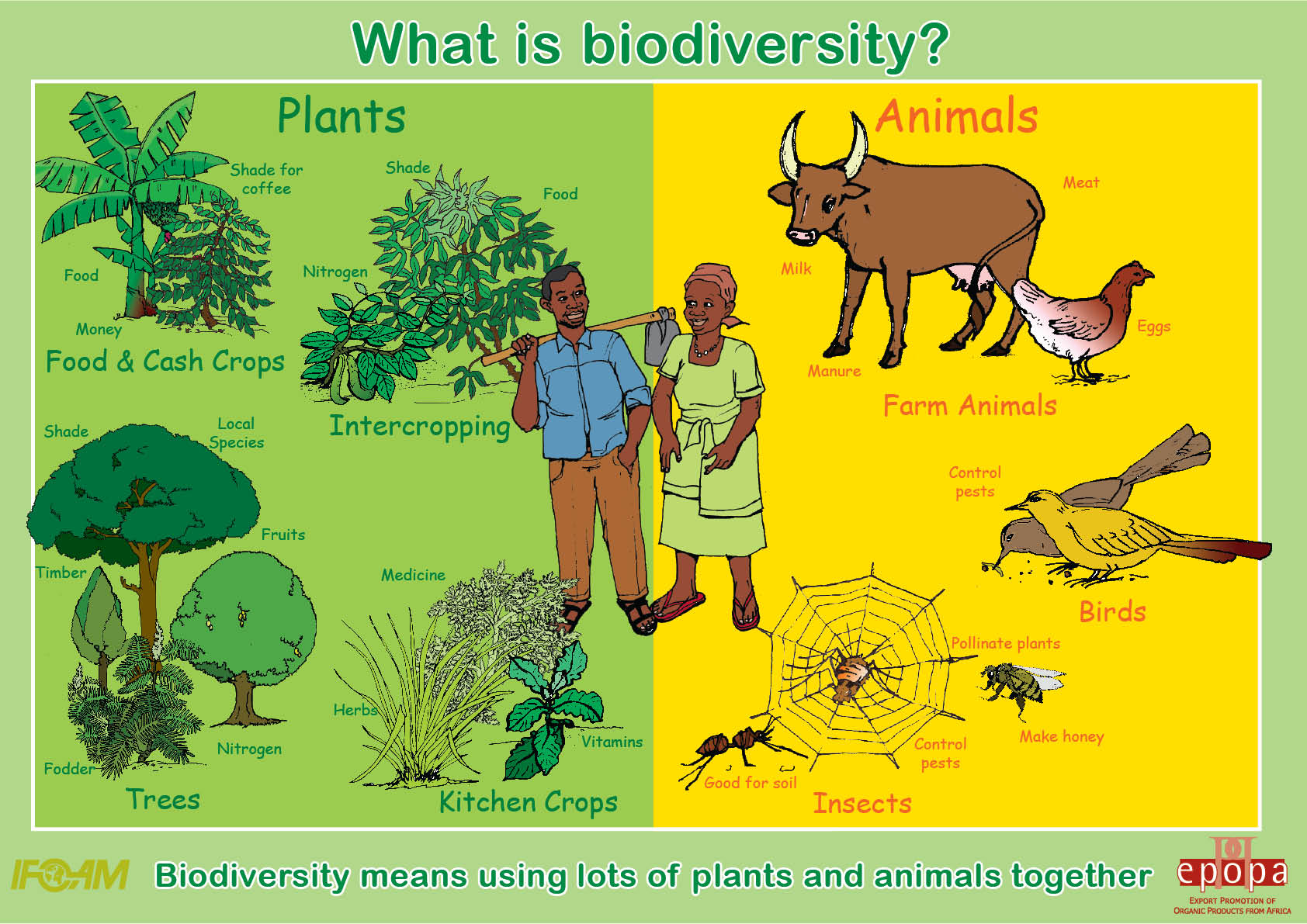 4 Ecological Relationships Among Organisms