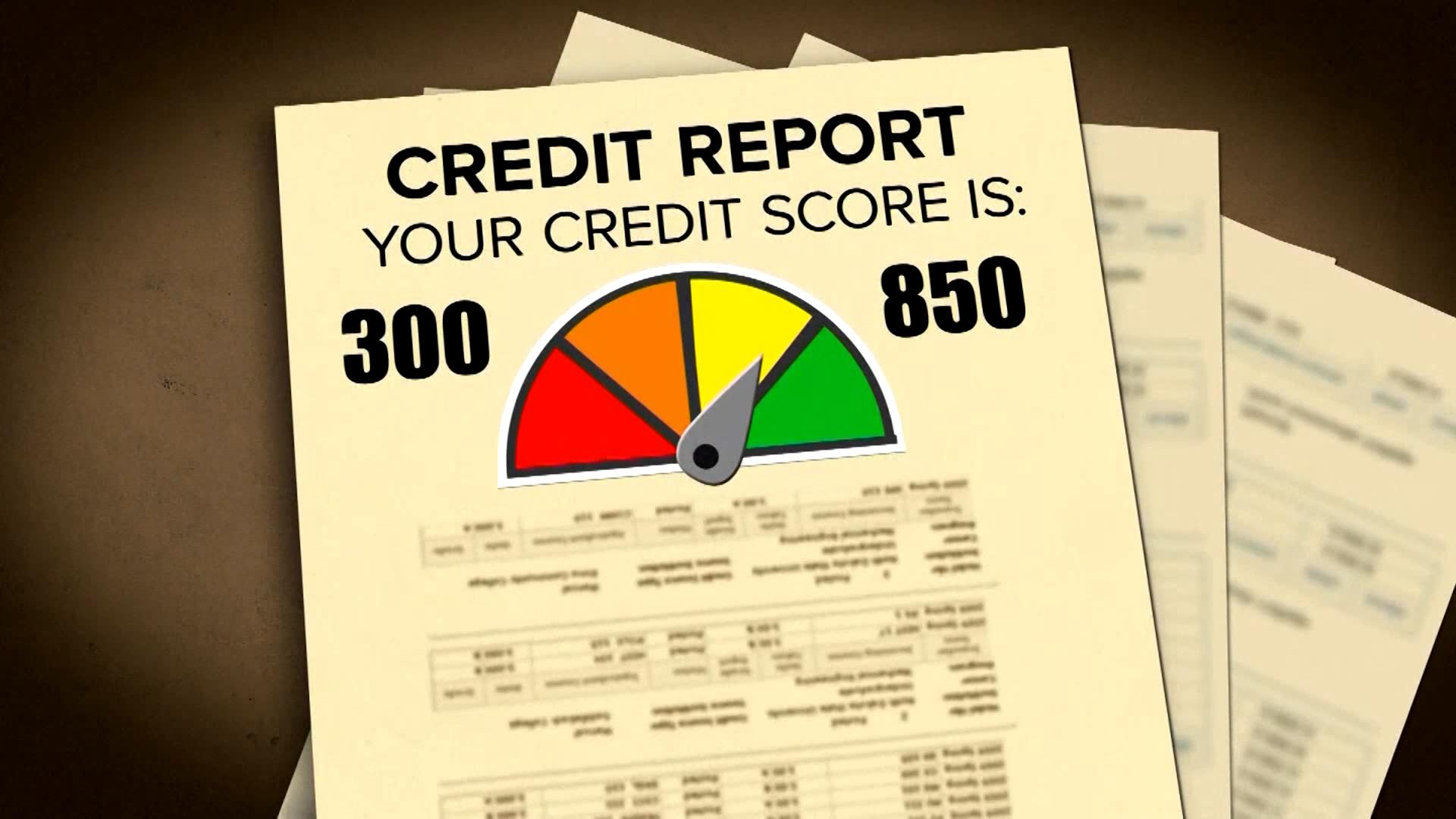 Credit Score Survey