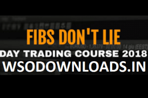 Fibs Don't Lie Course – Day Trading Course 2018 Download