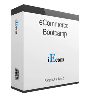 Radjah Amine - eCommerce Bootcamp - iEcom Blueprint Free Download