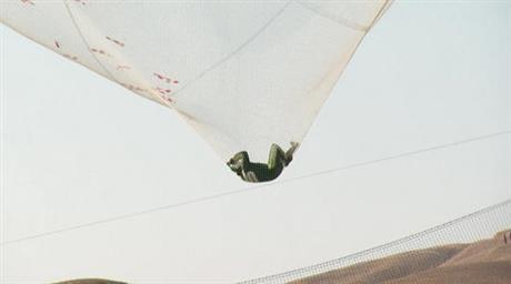 skydiver_224831