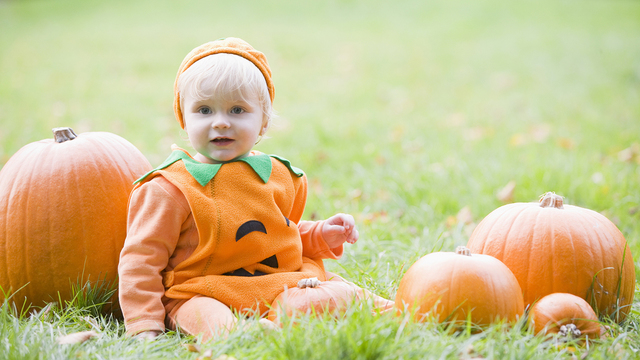 Baby Boy Outdoors In Pumpkin Costume With Real Pumpkins_480568