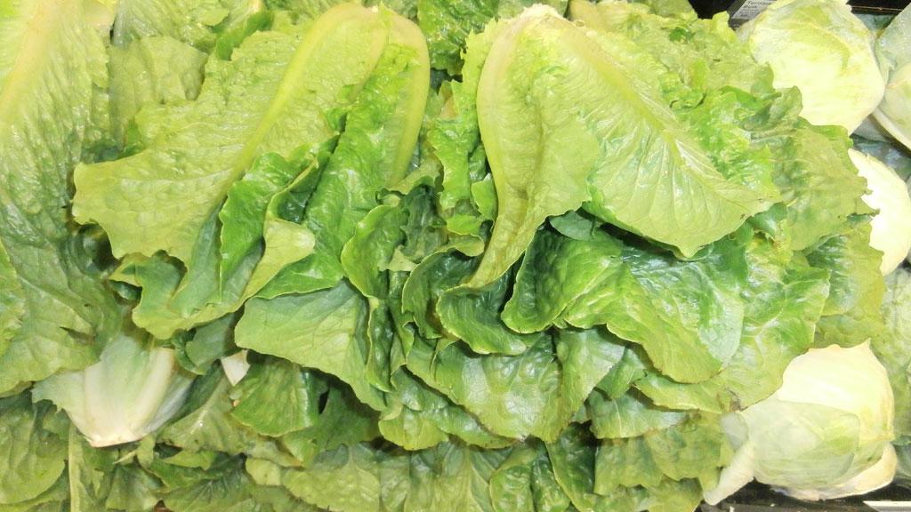 Stack_of_romaine_lettuce_heads_1527173017094.jpg