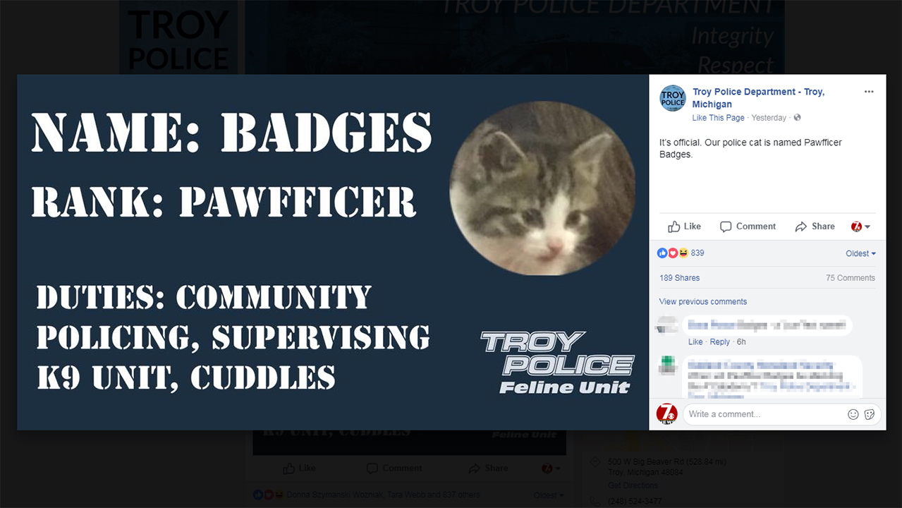 Troy Pawfficer