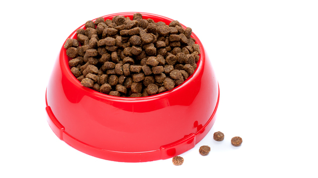Pet Food In Red Bowl_1532444607193