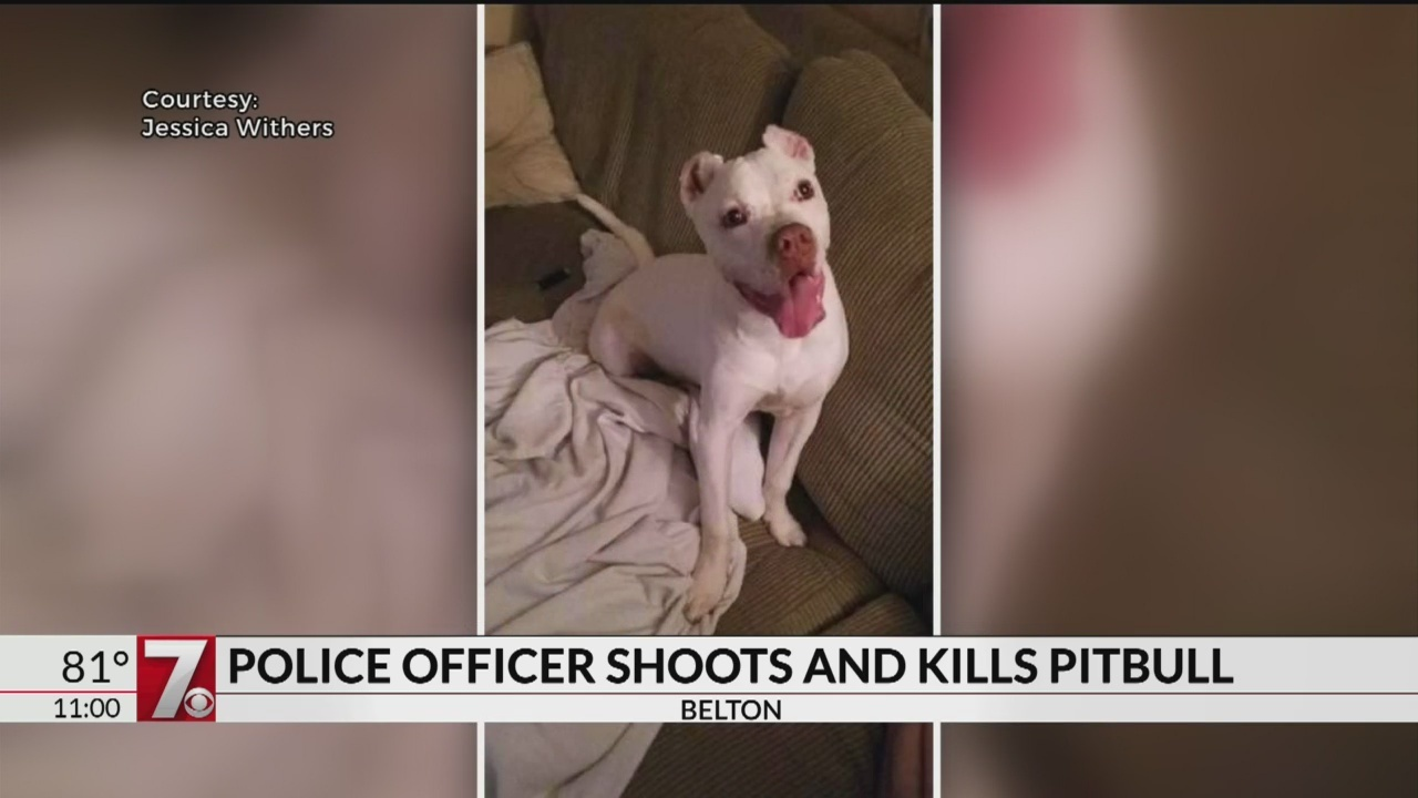 Police_shoot_and_kill_dog_1_20180818032847