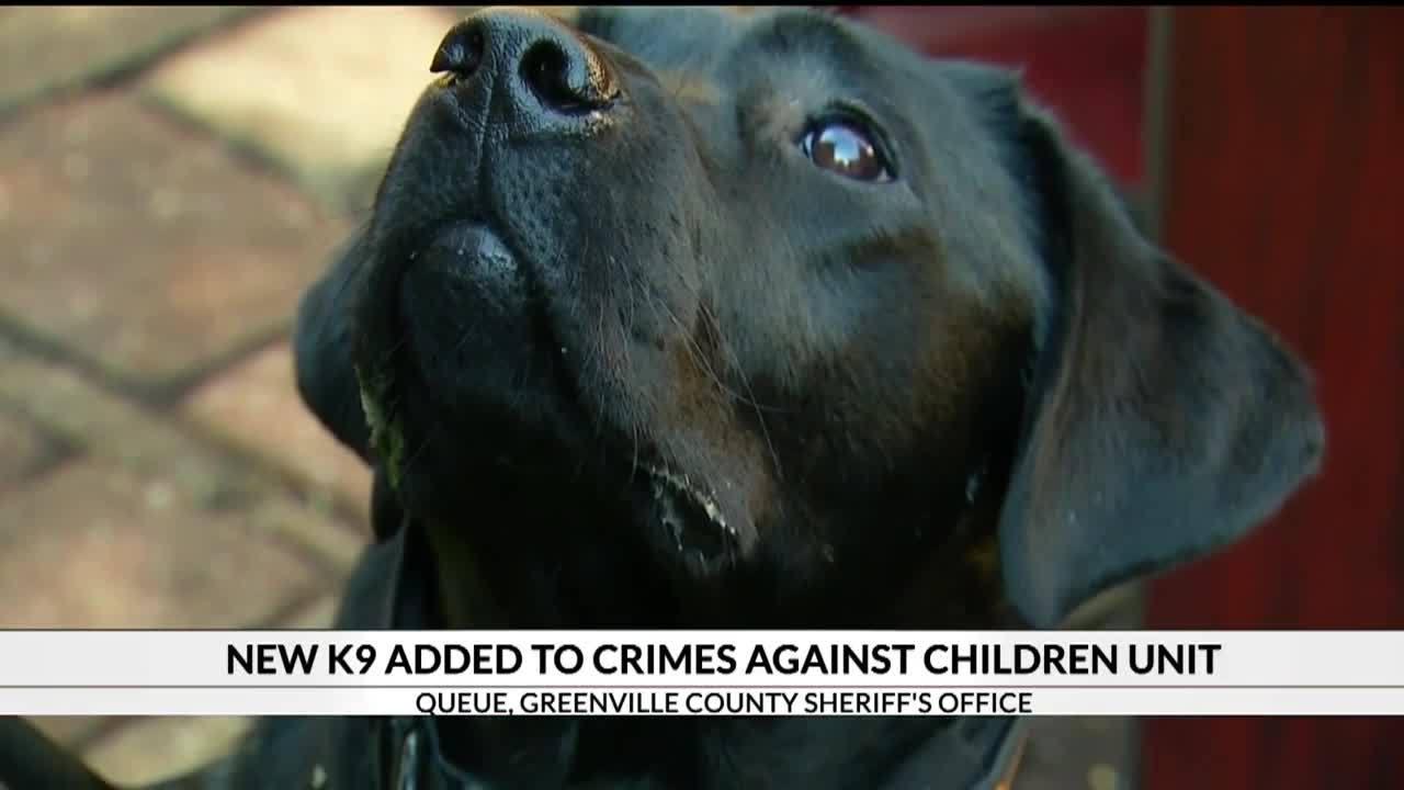 New_K9_added_to_Crimes_Against_Children__5_20181127173755