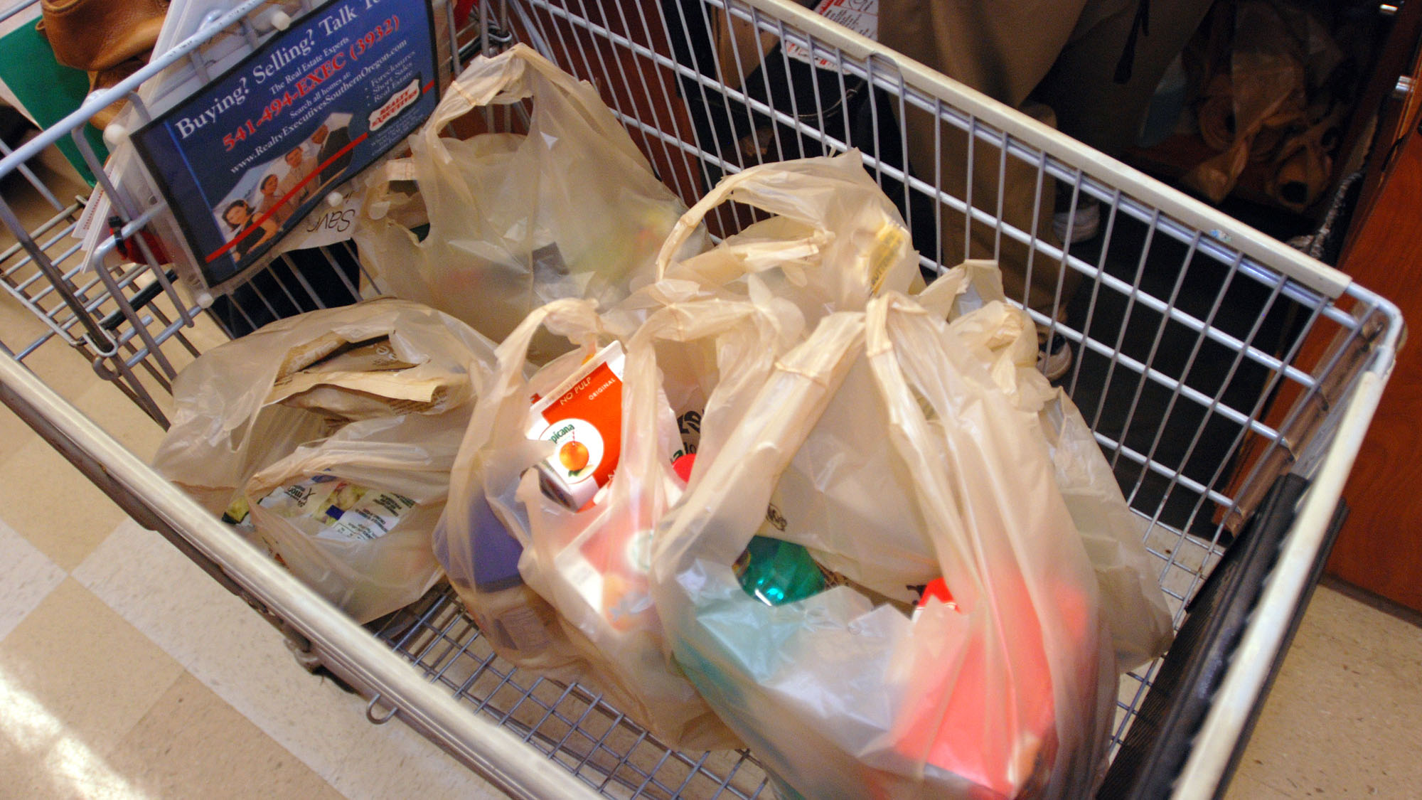 Plastic Bag Ban_1547583279702