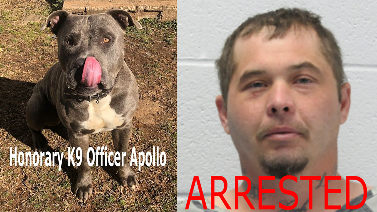 Apollo (left) and Meko Lockee (From: Polk County Sheriff's Office)