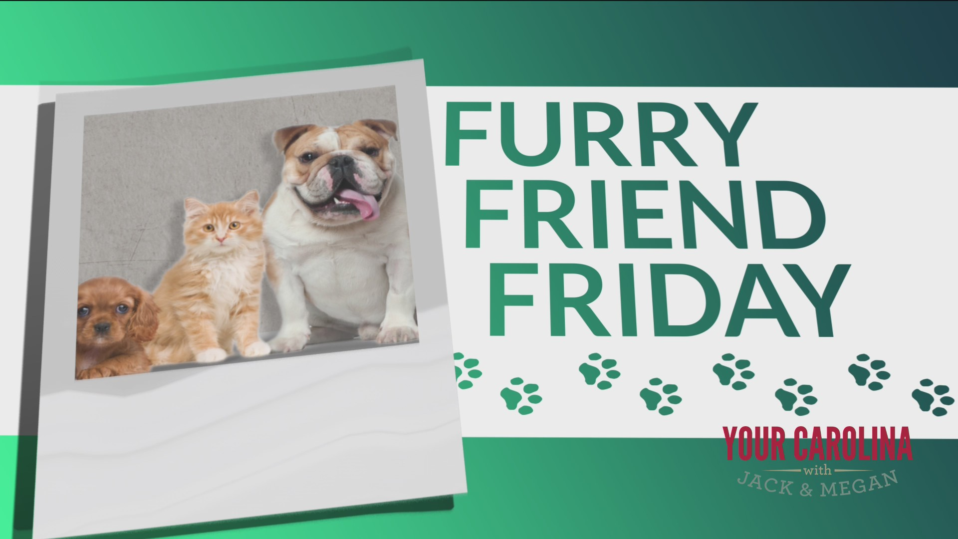 Furry Friend Friday - How Are Our Friends In Spartanburg and Greenwood?