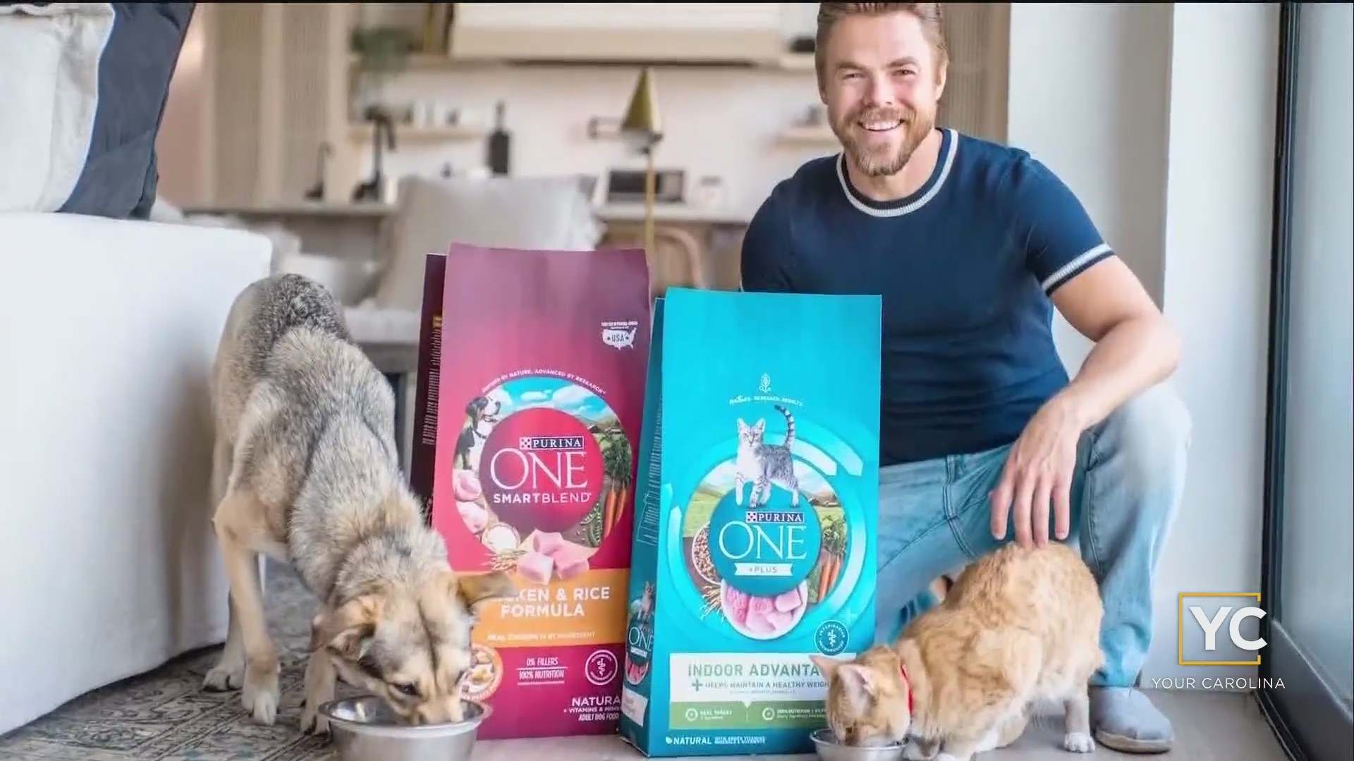 Derek Hough Helping Pets Find A Forever Home