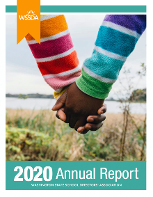 Cover of the 2020 Annual Report
