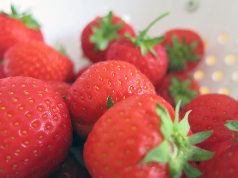Philadelphia-Torte-Erdbeeren-Schokolade-02
