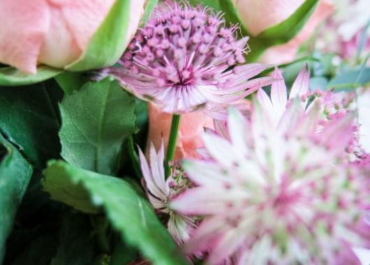 Blumen selber binden