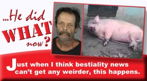 Hendersonville NC man arrested after getting stuck in pig's vagina