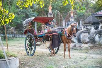 Horse cart and driver, Bagan